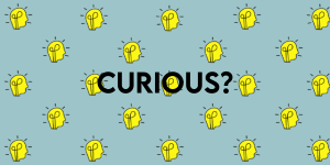 Curious? Check out Our Blog